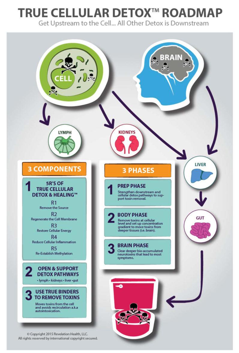 True Cellular Detox Roadmap | My Wellness Clinic | Wisconsin